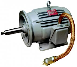 Locomotive Products Inertial Filter Motors Dayton